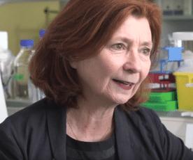 Alzheimer : la recherche s'intensifie